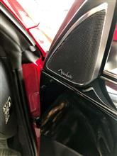 Beetle Fender Ver
