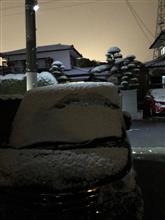 雪積もった( ̄▽ ̄)