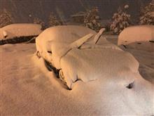 雪について独り言