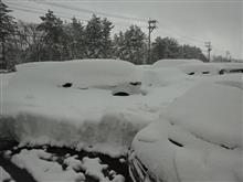またまた、大雪(TT)