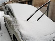 さらに雪の日