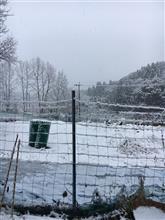 雪中3度目