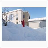 除雪・・・・・・無理やなぁ~