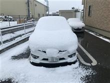 昨日洗車したのに(´;ω;`)