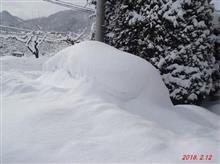 大雪でした(~_~;)