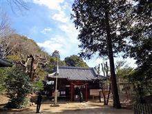 「氷川神社」「中山神社」「氷川女体神社」。やっとつながった!