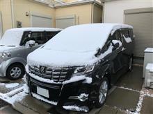 大阪にも雪~
