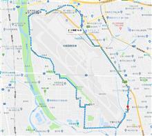 今年最初の鉄鳥 伊丹空港外周11km走破!