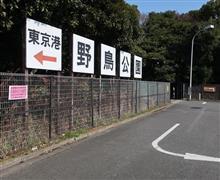 東京湾野鳥公園に行ってみる