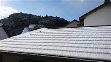 今年 4回目の雪が・・・( ;∀;)