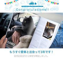愛猫と出会って3年!
