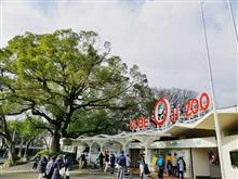 2度目の神戸・王子動物園に撮影に行ってきました♪
