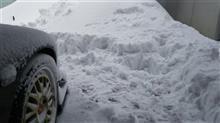 大雪だったけどクルマ達は大丈夫です!