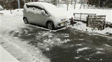 また 雪ですね