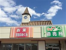 道の駅はがでお昼とおとめジェラートを堪能してきました(≧▽≦)