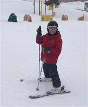 スキー&上毛カルタ「た」