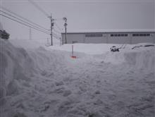 雪に翻弄された2週間…