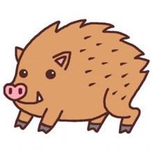 今日から仲間数人でイノシシ捕獲ブログをはじめます!
