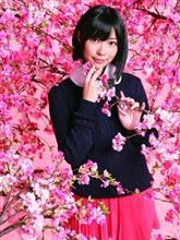 (● ˃̶͈̀ロ˂̶͈́)੭ꠥ⁾⁾河津桜って静岡県だけじゃねぇってな♫
