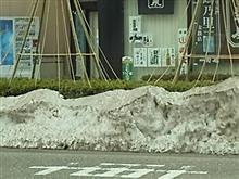 大雪災害の傷跡