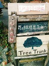津山市 TREE  TRUNKさん