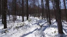 2回目の雪中行軍