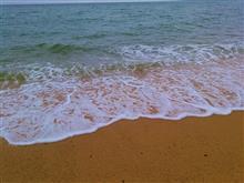 午前中の出来事。 海が見たい時ってあるよね。
