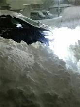 ひどいですな雪