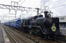 蒸気機関車を見に行ってきました!