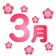 春ですなぁ~(*´∀`*)ノ。+゚ *。