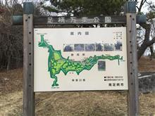 足柄街道(神奈川県側)ドライブ