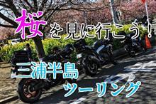 桜を見に行こう!三浦半島ツーリング