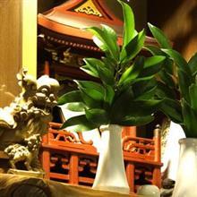 東日本大震災から 3年 大災難に遭遇して知った、台湾の好意と善意