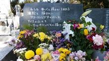 ユッコこと岡田有希子さんの眠る成満寺へお墓参り