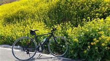 【自転車】夕やけこやけライン