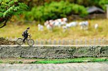 わが国とは違う! なぜ、日本の警官は、「自転車に乗るのか」 =中国報道