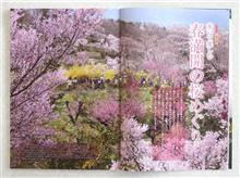 03/16 歩いて楽しむ 春満開の桜めぐり━━━━━━(゚∀゚)━━━━━━!!!!!!!