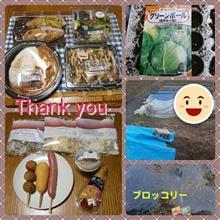 春野菜&毎日ゴチ<(_ _)>