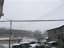 今日は雪ですね~~!