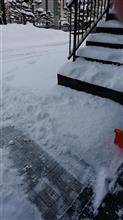 雪かきの後は・・・