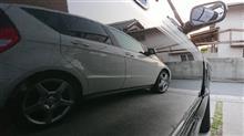 洗車してウットリ