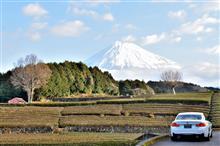 静岡へドライブ