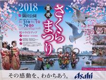 隅田川桜堤を歩く🌸
