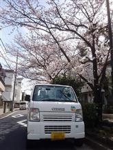 庭弄りとドライブ(軽トラ)