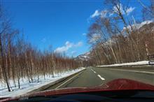 やっと北海道にも春がきたと実感