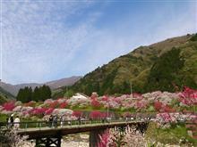 イベント:三遠南信ロードスターの会 桜&花桃ツーリング