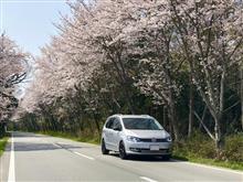 春ですね〜(^^)