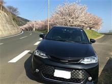桜と共に🌸