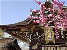 京都・北野天満宮&上七軒&薩長同盟ゆかりの地へ♪