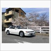 桜とランチと、入鹿池・ダムカ ...